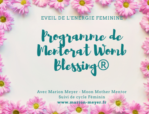 Programme de Mentorat Womb Blessing®